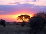 SerengetiSunSet.jpg